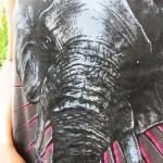 Meu Look: Striped Elephant!